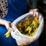 courgette flowers, Kaplan'ın Yeri, photography by Tuba Şatana